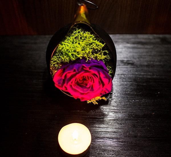 trandafiri criogenati cadou
