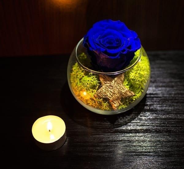 Trandafiri criogenati in bol